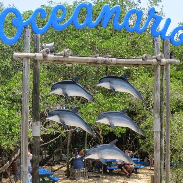 Albitours, tours isla del rosario playa blanca en lancha, tours islas del rosario, playa blanca baru, turismo cartagena, baru, islas del rosario en lancha, cartagena, turismo