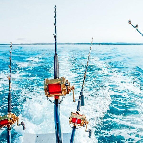 Pesca Deportiva - Alquiler De Lanchas En Cartagena